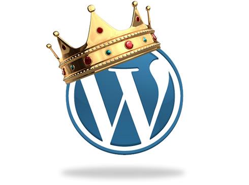 7 Reasons to Choose a WordPress Website